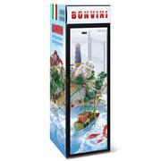 Холодильный шкаф Снеж Bonvini 500 BGС
