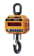 Крановые весы CAS Caston-III 10 THD TW-100 (TWN)